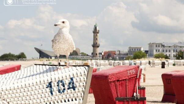 Heiraten im Standesamt Rostock