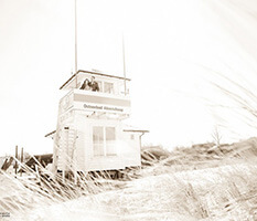 hochzeitsfotograf-Ribnitz-Damgarten
