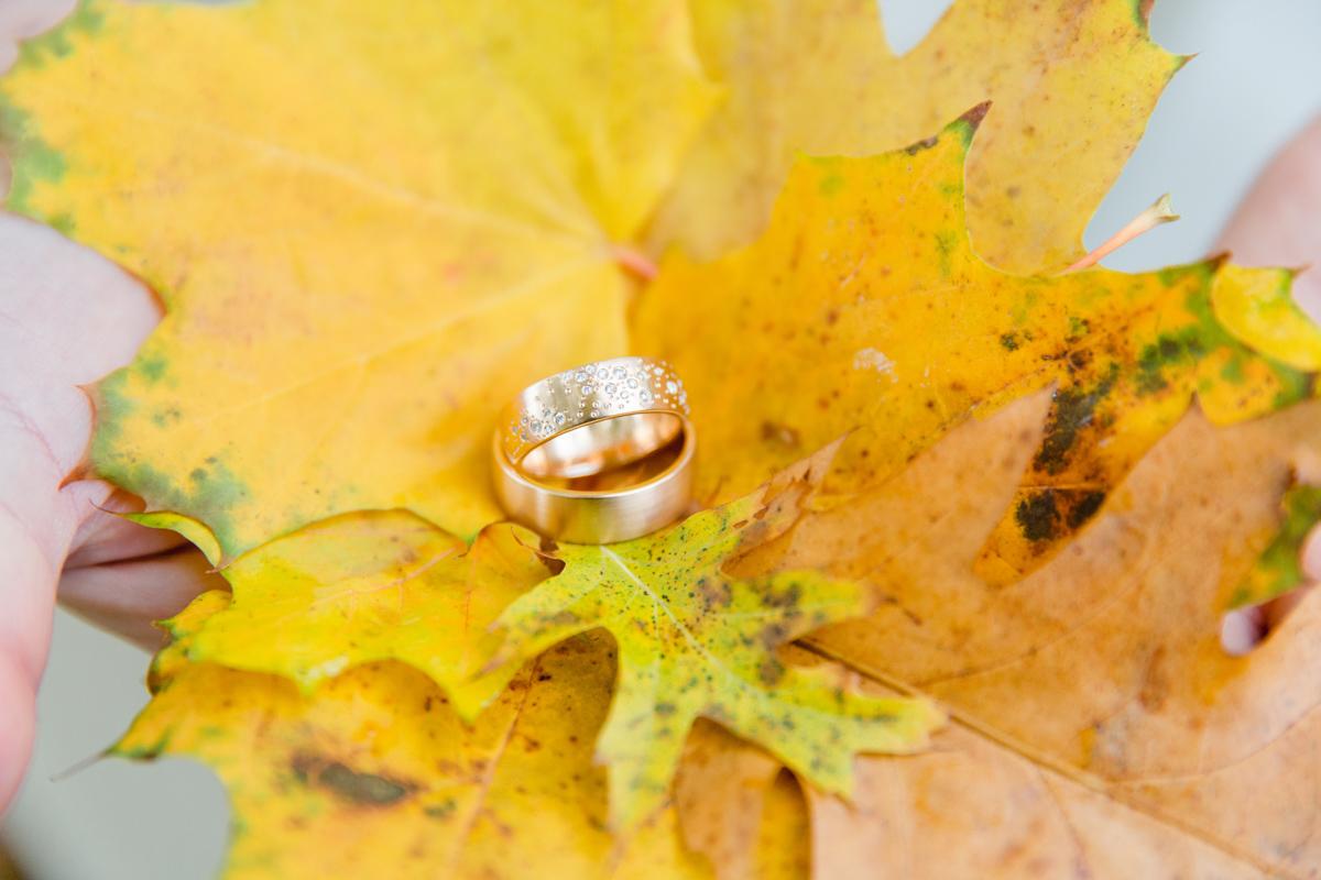 Ringfoto mti Blättern