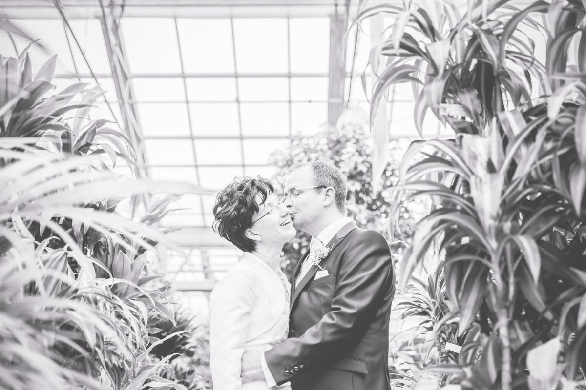 Hochzeitsfotos inmitten von Palmen, mitten in Rostock.