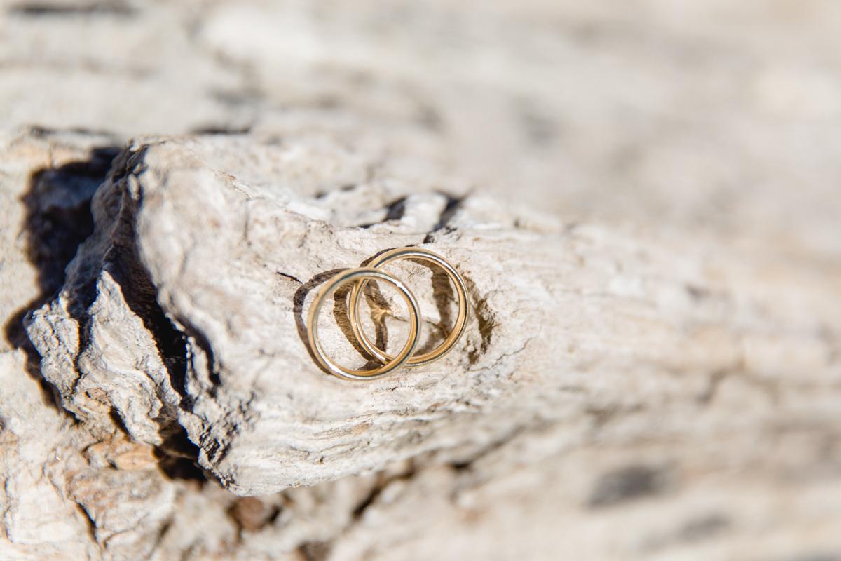 Ringe fotografiert auf Treibholz.