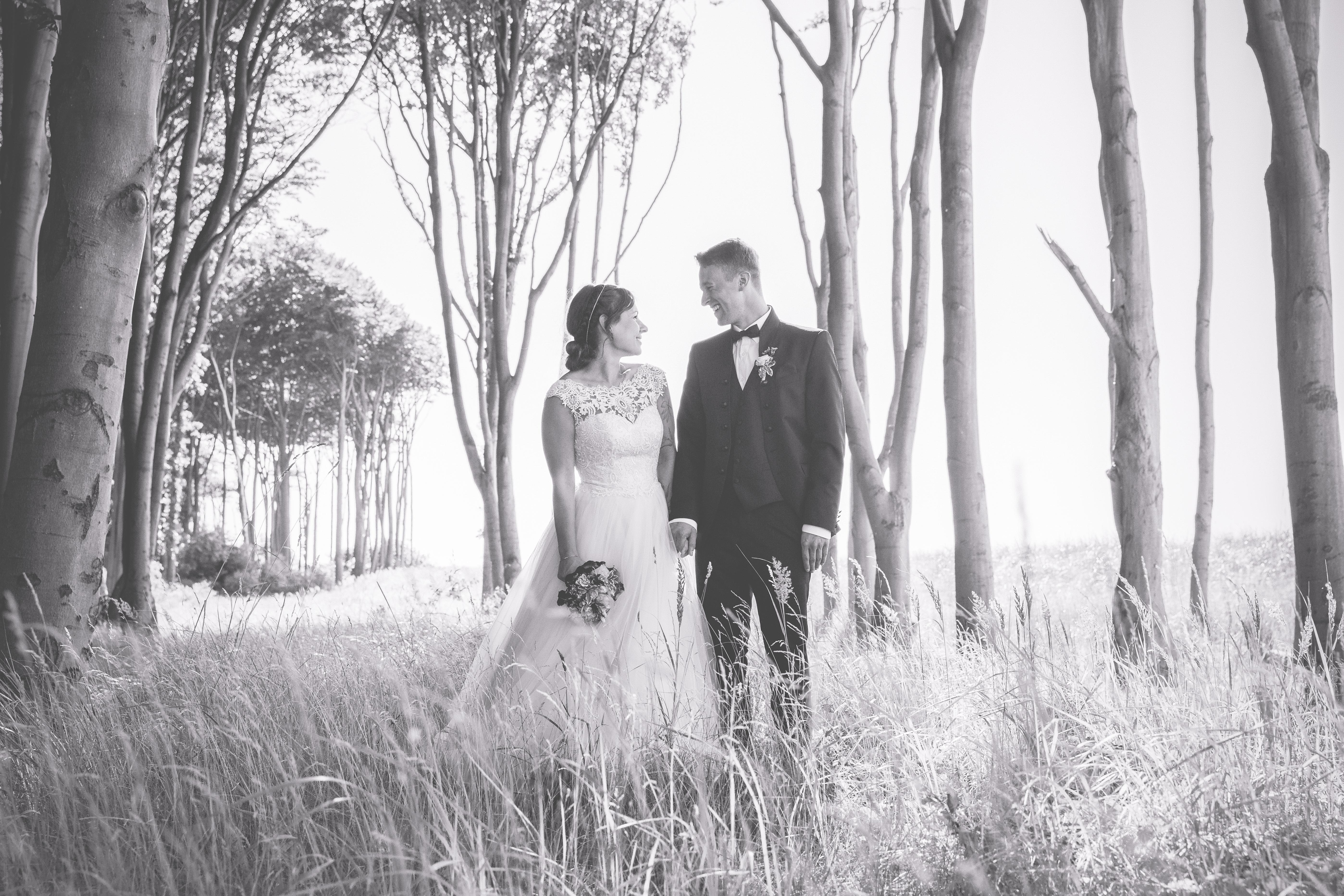 Preisübersicht Fotos Hochzeit