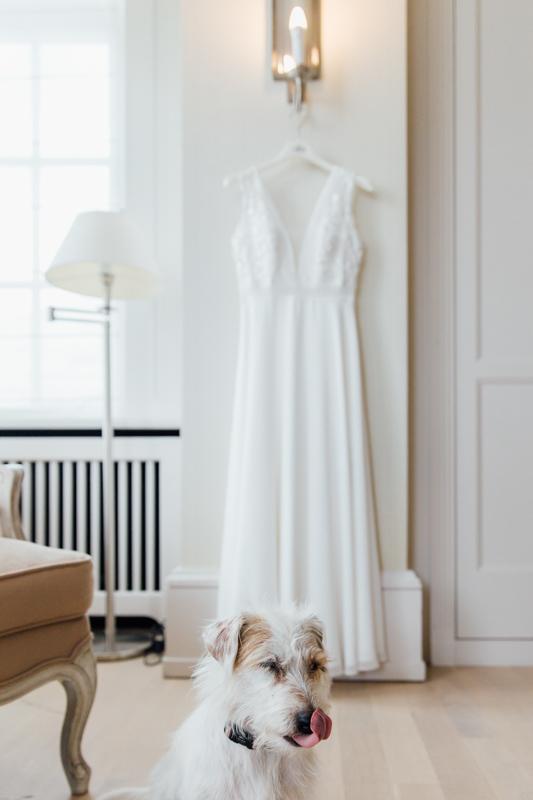 Hochzeitsfoto Hund mit Brautkleid.