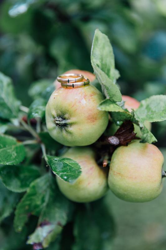 Hochzeitdetailfoto der Eheringe auf einem Apfel.